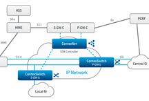 Software Defined Networking, NFV, EC