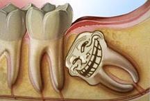 Dental humor / by Dianne Acosta