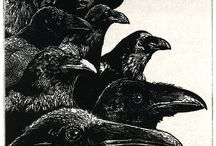 CROWS, RAVENS...Painted / artists painting the amazing corvids