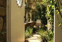 Backyard / by Alma Hernandez Esquivel