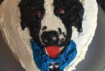 Palourde chien mira à trois ans / Reproduction de sa photo sur le gâteau