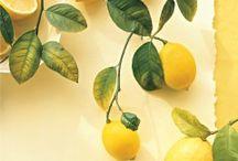 λεμονακι μυρωδατο