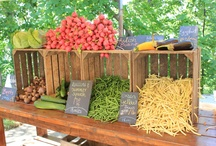 Farmers Markets & Roadside Stands / by Tracy Johnson