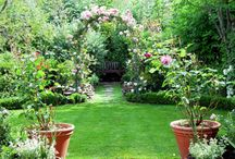 Garden Ideas / by Amber Godard