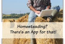 Homesteading / Living off the land, financial freedom, and getting back to basics.  Go to http://myhomesteadlife.com/ to read more.