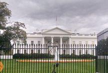 Washington DC Vacation Ideas