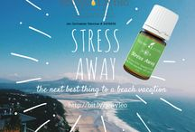 Young Living Essential Oils / YLEO