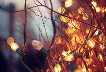 Lights/Golden Hour