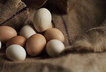 Eggs / by Seasonal Roots