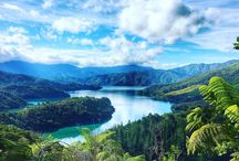 NZ Walks