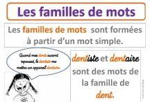 Fr Vocab Familles des mots