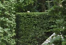 G E R W I N E  OUTDOOR STYLING / Lounge, Fun, Garden, Backyard,Inspiration, Styling, Furniture,
