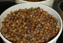 All About Hazelnuts