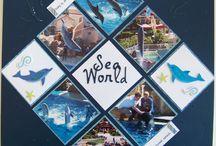 sea travel book