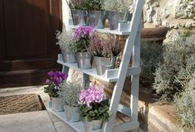 Plant ladders