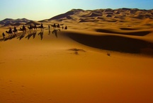 Morocco / by Tahir Shah