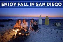 Seasonal Fun in San Diego / It may seem like San Diego has two seasons: Sunny and Mild and Sunny and Warm; but San Diego definitely has seasonal changes throughout the year (it's just off by a few months and there is no snow :-) )