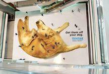 Creative Advertising  / Creativity makes advertising effective and get the message across.