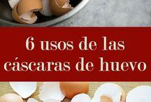 Cascara de huevo. Utilidades