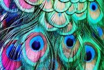 Inspiratie,kleurtjes,dingetjes..
