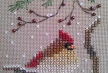 Robins/Birds