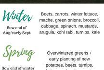 Gardening: Season
