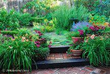 Gardening / by Tanya Rentsch