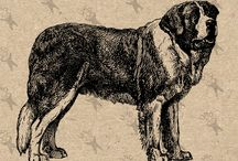 Dog Antique image