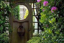 drzwi z pergolą