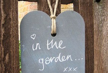 in the garden / by Grace Lissauer