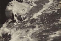 Yoshiyuki Iwase Photographer / Photographer (1904-2001)
