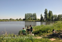 Fishing in Poland - Werynia / Fishing with Lucio present beautiful deer in Poland.