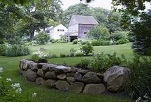 How does my garden grow? / by Rebecca Watson Barnhart