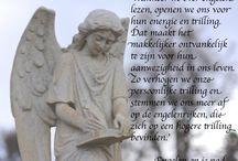 Engelen op je Pad / Engelen op je Pad is een inspirerend engelenboek, dat je helpt contact te maken met je eigen engelen. Je leest hoe ze helpen bij gezondheid, verlies, liefde en voor meer vreugde in je leven. Een must have voor engelenmensen en lichtwerkers.