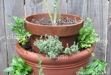 jardin / espace sympa