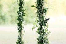 Свадьба: Место / Идеально, на открытом воздухе, в лесу...