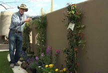 Videos - Gardening and Landscaping in the Southwest
