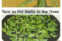 Drying Herbs/Produce