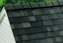 Roofs, Shingles, and Other Roofing Stuff