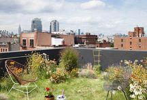 Kreative Dachgärten / Der etwas andere Dachdecker: Hier finden Sie verschiedene Vorschläge für den perfekten Dachgarten. Darunter die passende Dachbepflanzung, angesagte Gartenmöbel und Beleuchtungsideen.