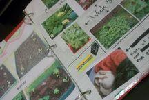 KSS: Gardening