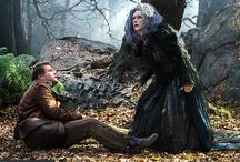 2014 Into The Woods - The Movie