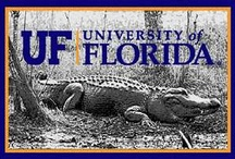 Orange & Blue / All things for Gator Game Days and Gator Spirit! / by Rebecca Harris