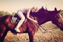 Horseaddict  / Horses