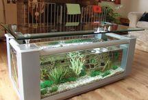 table basse aquarium