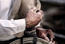 Hands / by Ann Davis