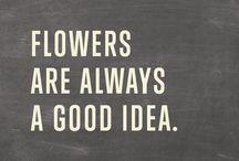 ~Flower Wisdom~