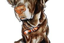 animal illustration / Animal caricatures , cartoons and illustration