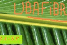 Papel de fibra vegetal