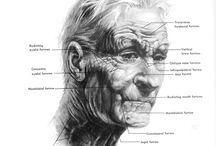 cev_Proporciones / Las proporciones a la hora de dibujar las diferentes edades